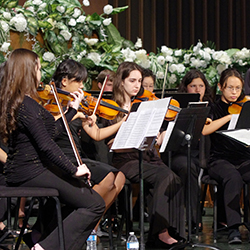 Community Orchestra - LACO